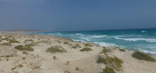 Der Dünenstrand auf BOA Vista, einer Kapverden Insel